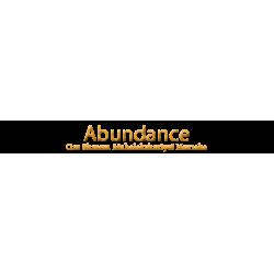 Abundance - Om Shreem Mahalakshmiyei Namaha