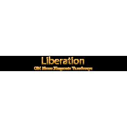 Liberation - OM Namo Bhagavate Vasudevaya