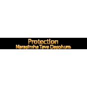 Protection - Narasimha Tava Dasohum (10)
